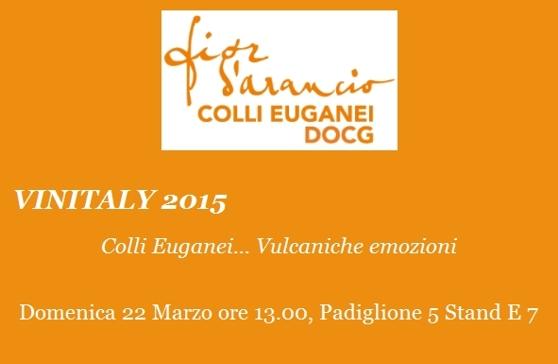 Vinitaly 2015 Colli Euganei Vulcaniche Emozioni